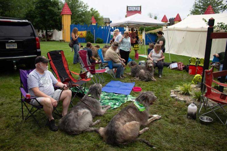 Cu & Craic Irish Wolfhounds