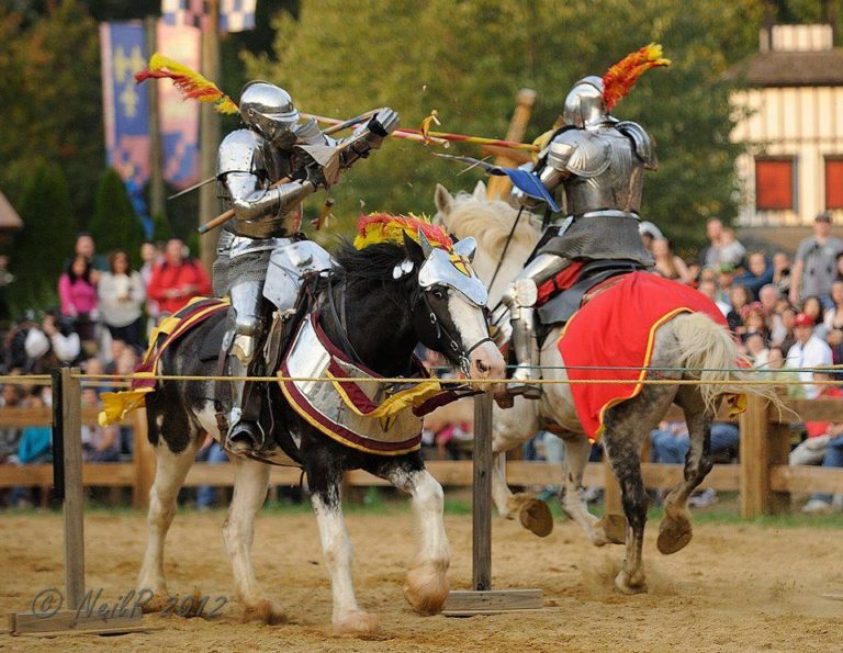 The Free Lancers deliver hard hits and thrilling action three times each day.
